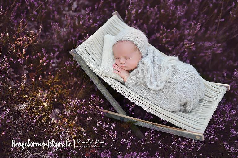 Baby Fotoshooting In Paderborn Heide